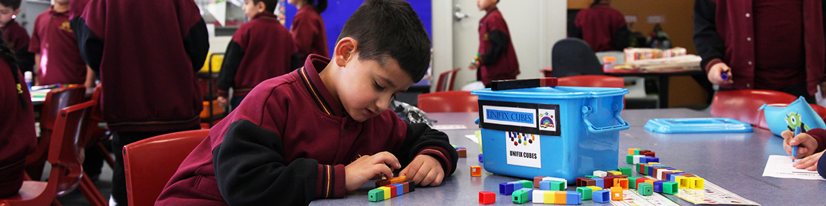 mathematics-coolaroo-south-ps